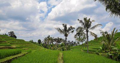 5 Dinge, die du über Indonesien wissen solltest