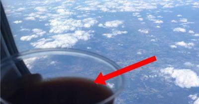 Deswegen möchte jeder Tomatensaft im Flugzeug trinken